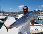 """Верфь """"Flash Catamarans"""" приглашает Вас посетить Валенсию и Балеарские острова в рамках специальной программы """"Living By Sea Tours 2013"""""""